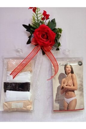 Pierre Cardin No Show Bikini 5li Slip