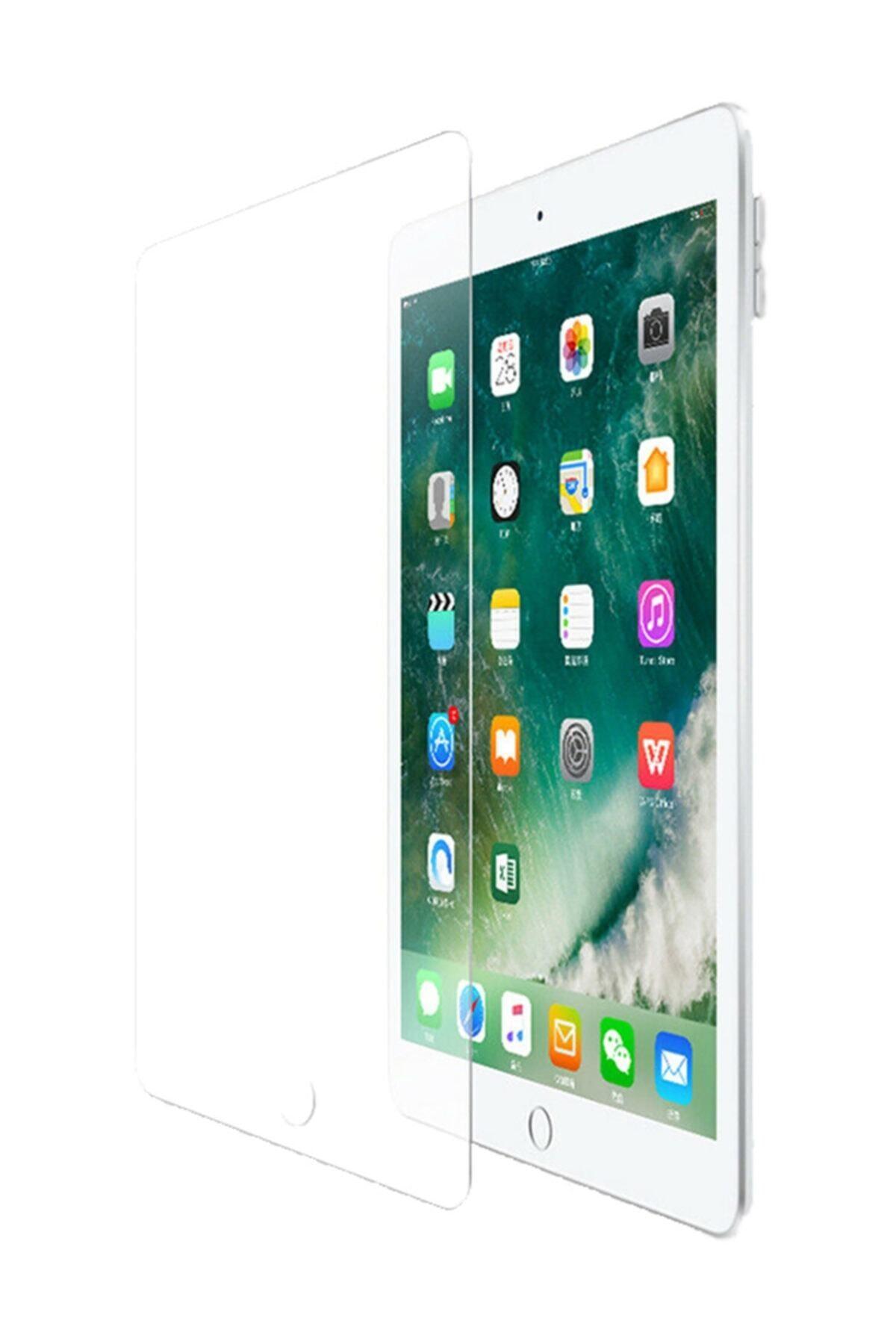 """Microsonic Apple Ipad 10.2 """"7 Nesil"""" (10.2 Inç) Ekran Koruyucu Kırılmaz Cam 1"""