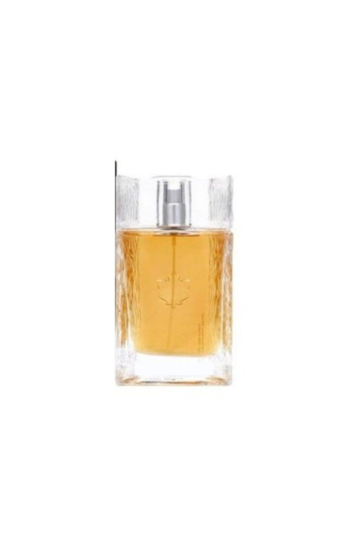 lumberjack Italy Edp 100 ml Erkek Parfüm 8698720481000 1