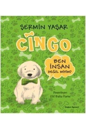 Doğan Egmont Cingo