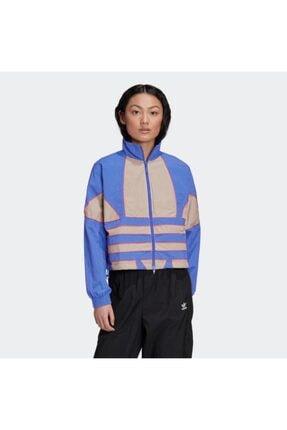 adidas Kadın Spor Ceket