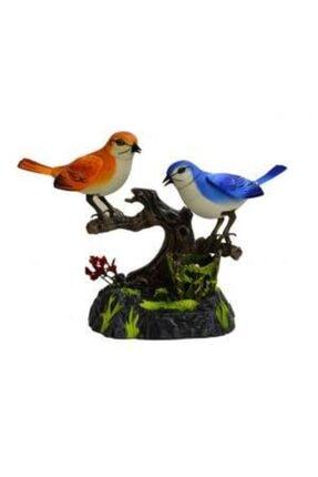 Vardem Renkli Müzikli Kuş Cenneti Ikili