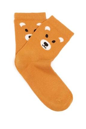 Mavi Ayı Baskılı Soket Çorap