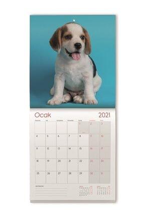 Gıpta 2021 Duvar Takvimi 2931 29x31 Tel Dikişli - Kuşe Duvar Takvimi Köpek