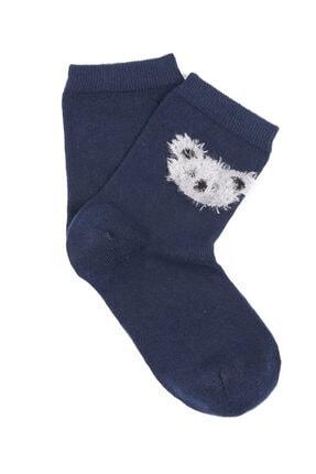 Mavi Koala Baskılı Uzun Çorap