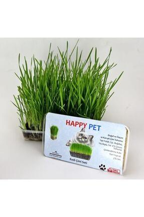 Happy Pet Kedi Çimi Seti 10 gr 6'lı Karışım Çim