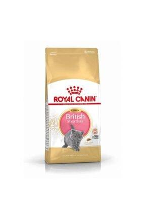 Royal Canin British Shorthair Kitten Kedi Maması, 2 Kg
