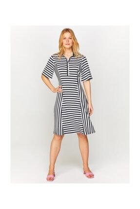 Faik Sönmez Kadın Lacivert Polo Yaka Çizgili Örme Elbise 60275 U60275
