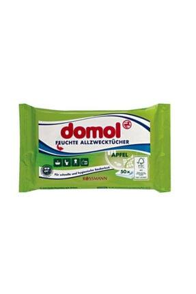 DOMOL Çok Amaçlı Antibakteriyel Temizlik Bezi 2'li Paket