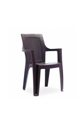 Özel Yapım ARSLANLAR - Gardelia Elit 4 Adet Plastik Koltuk Sandalye