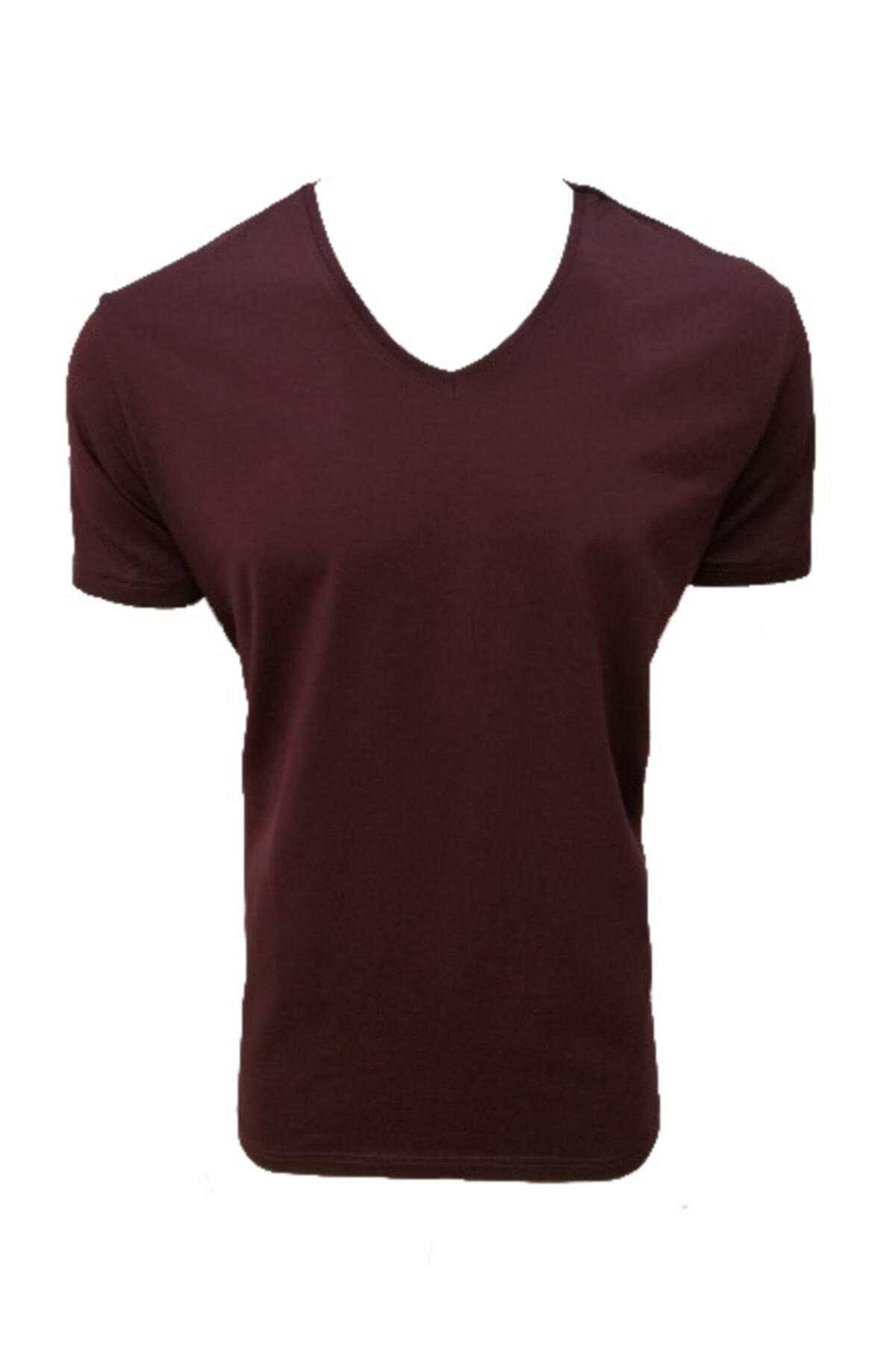 Lion V Yaka Süprem Likralı Basic Erkek T-shirt  Bordo   2801 1