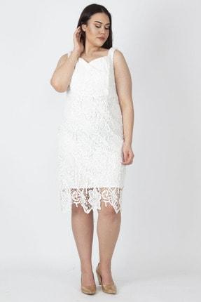 Şans Kadın Kemik Astarlı Dantel Elbise 65N16222
