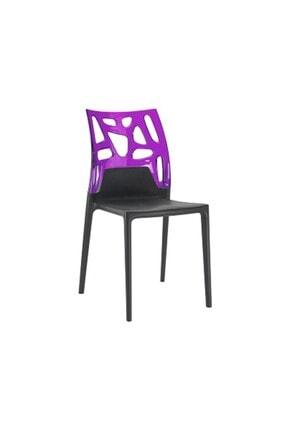 Papatya Ego-rock Plastik Sandalye Polikarbonat Sırt Gaz Enjeksiyonlu Cam Elyaflı Pp Gövde