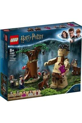 LEGO ® Harry Potter™ Yasak Orman: Umbridge'in Karşılaşması 75967 Yapım Seti
