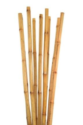 fidanci 10 Adet Bambu Destek Çubuğu 100 cm