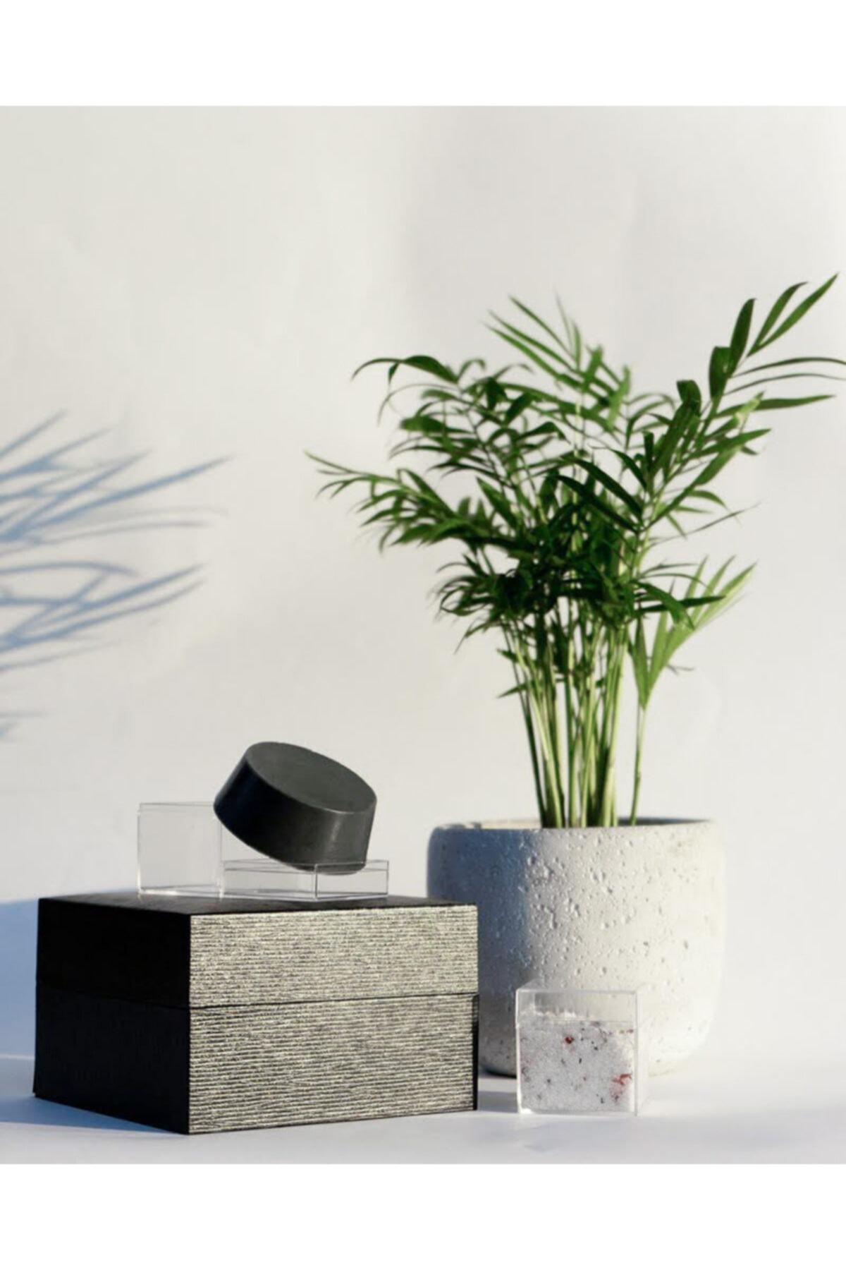 Soapy Co Aktif Karbonlu Çay Ağacı Yüz Sabunu - Yağlı Ve Akneye Meyilli Ciltler 1