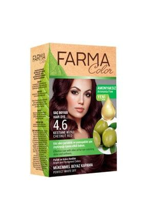 Farmasi Kestane Kızılı Saç Boyası 4.6