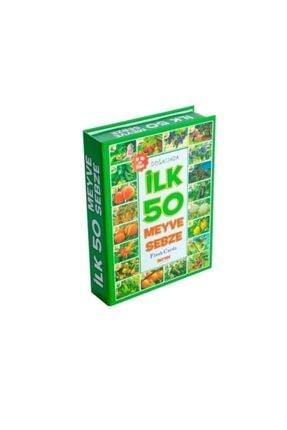 DIY Toys Dıy-toy Flash Cards Ilk 50 Meyve Sebze