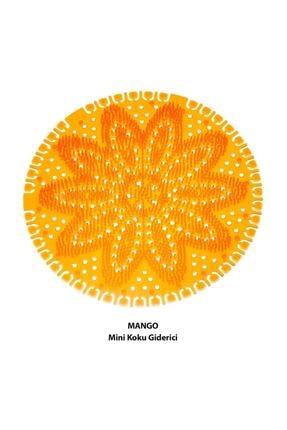 Rulopak Mini Lavabo - Pisuvar Süzgeci Koku Giderici 10 Adet Mango