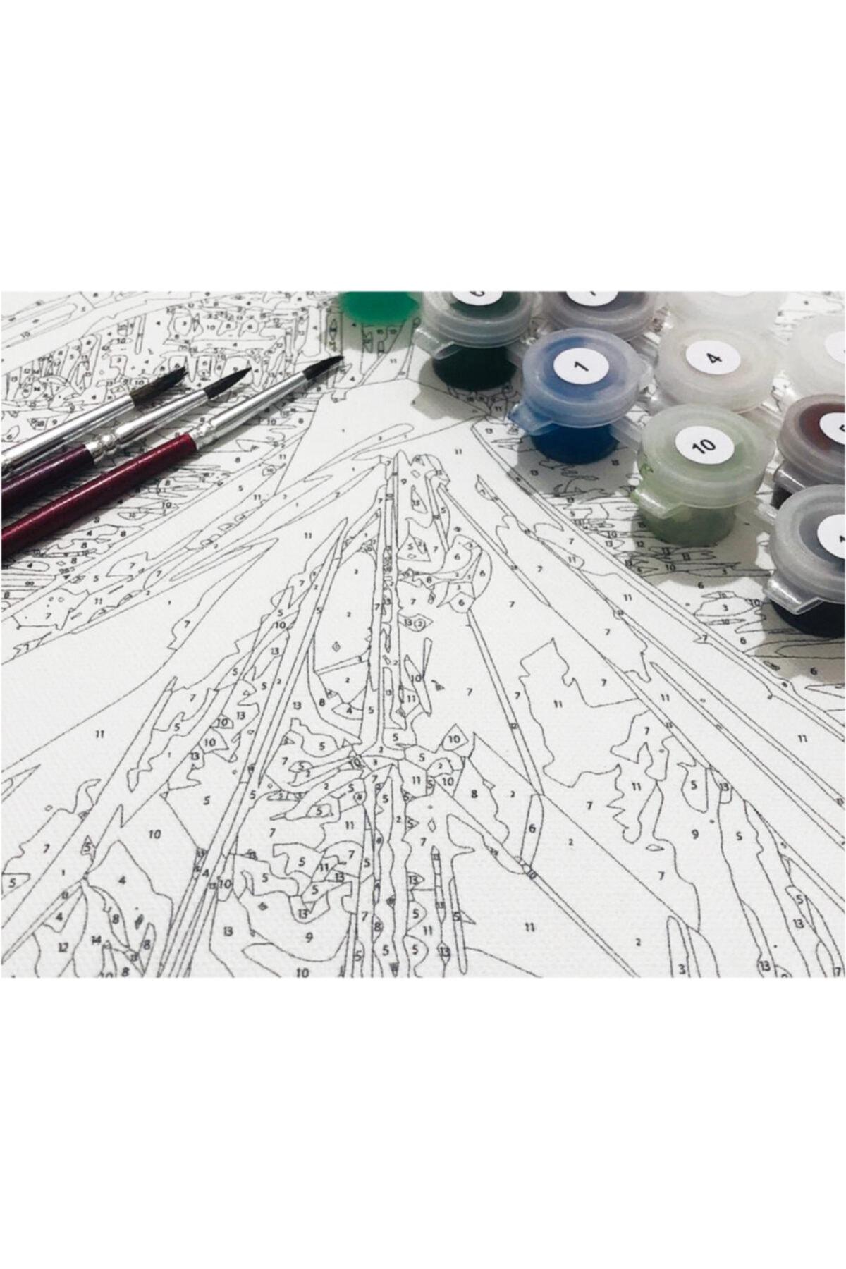 GoShoping Sayılarla Boyama Tablo Seti 45x55 Cm Kanvas Fırça Ve Boyalar Dahil Kzl01 2