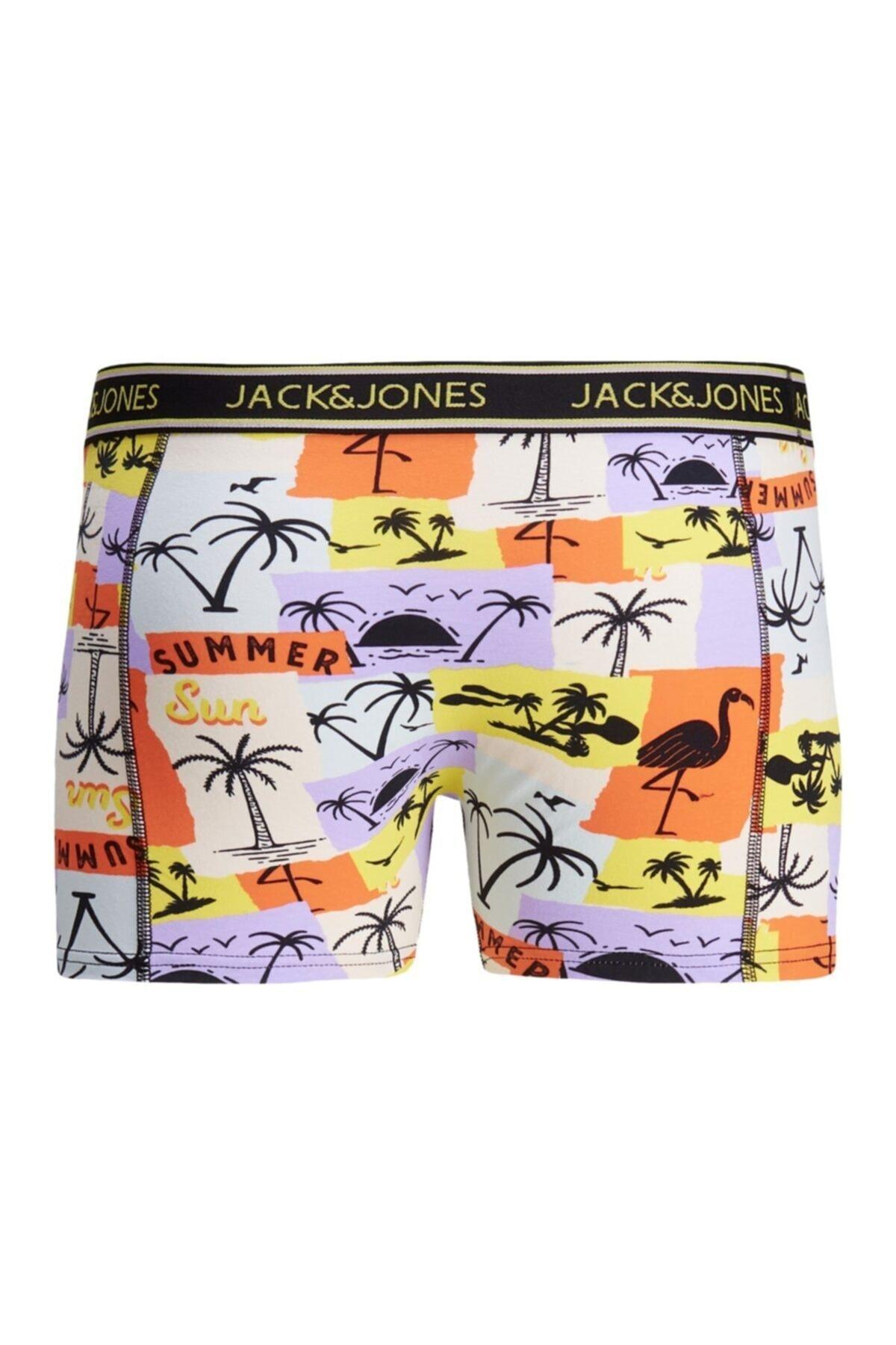 Jack & Jones Erkek Mor Lavender Boxer 12185405 2
