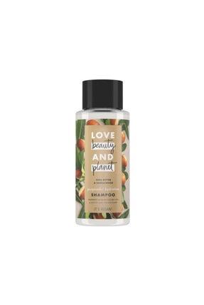Love Beauty and Planet Shea Yağı Ve Sandal Ağacı Şampuan 400ml