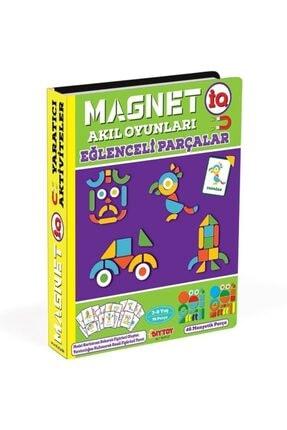 DIY Toys Dıy-toy Magnetiq Eğlenceli Parçalar 1543