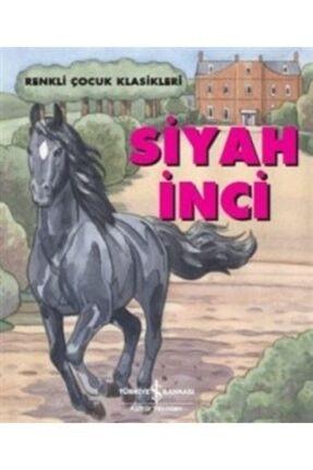 İş Bankası Kültür Yayınları Siyah Inci
