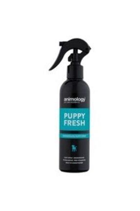 Animology Yavru Köpekler Için Kuru Sprey Şampuan Puppy Fresh 250 Ml
