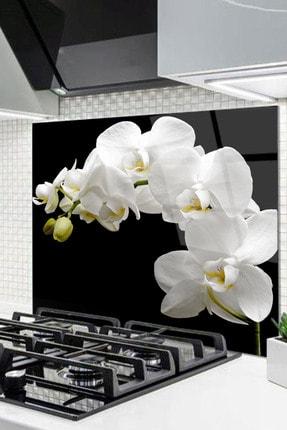 Olinpa 60x52 Cm Cam Ocak Arkası Koruyucu Tezgah Ankastre Arkası Koruyucu | Orkide