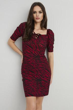 Cool & Sexy Kadın Bordo Zebra Desen Karpuz Kol Elbise Yİ2162