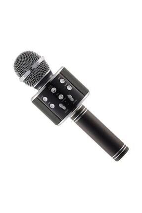 Wster Karaoke Mikrofon