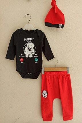 Miniworld Puppy Desenli 3'lü Şapkalı Erkek Takım 3-6-9 Ay