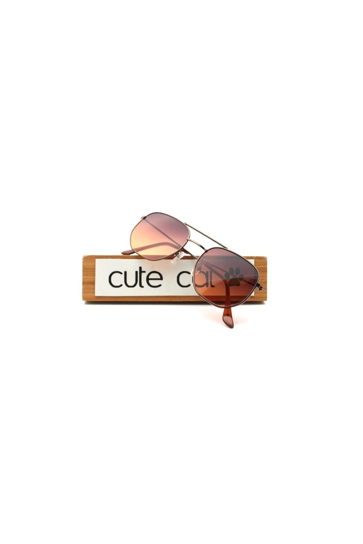 CUTE CAT Hidra Brown Degrade Small Hexagon Unisex Güneş Gözlüğü 2