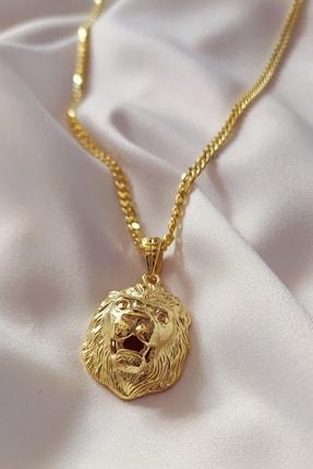 PIRAYE 925 Ayar Aslan Figürlü Kolye 14 Ayar Altın Kaplama 60 Cm
