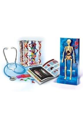 CLEMENTONI Deney Seti Insan Vücudu Ve Anatomi