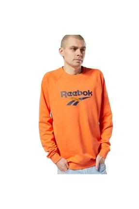 Reebok CL V UNISEX CREW Çok Renkli Kadın Sweatshirt 100584434
