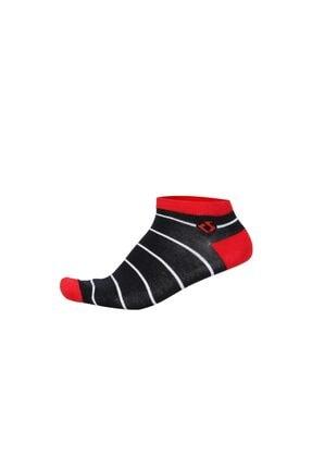 Korayspor Çoraplar Ince Çizgili Patik Çorap Laci.kirmz.byz Ks420ptk-461