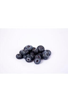 Aymuz Blueberry Taze (YABAN MERSİNİ) 125 gr