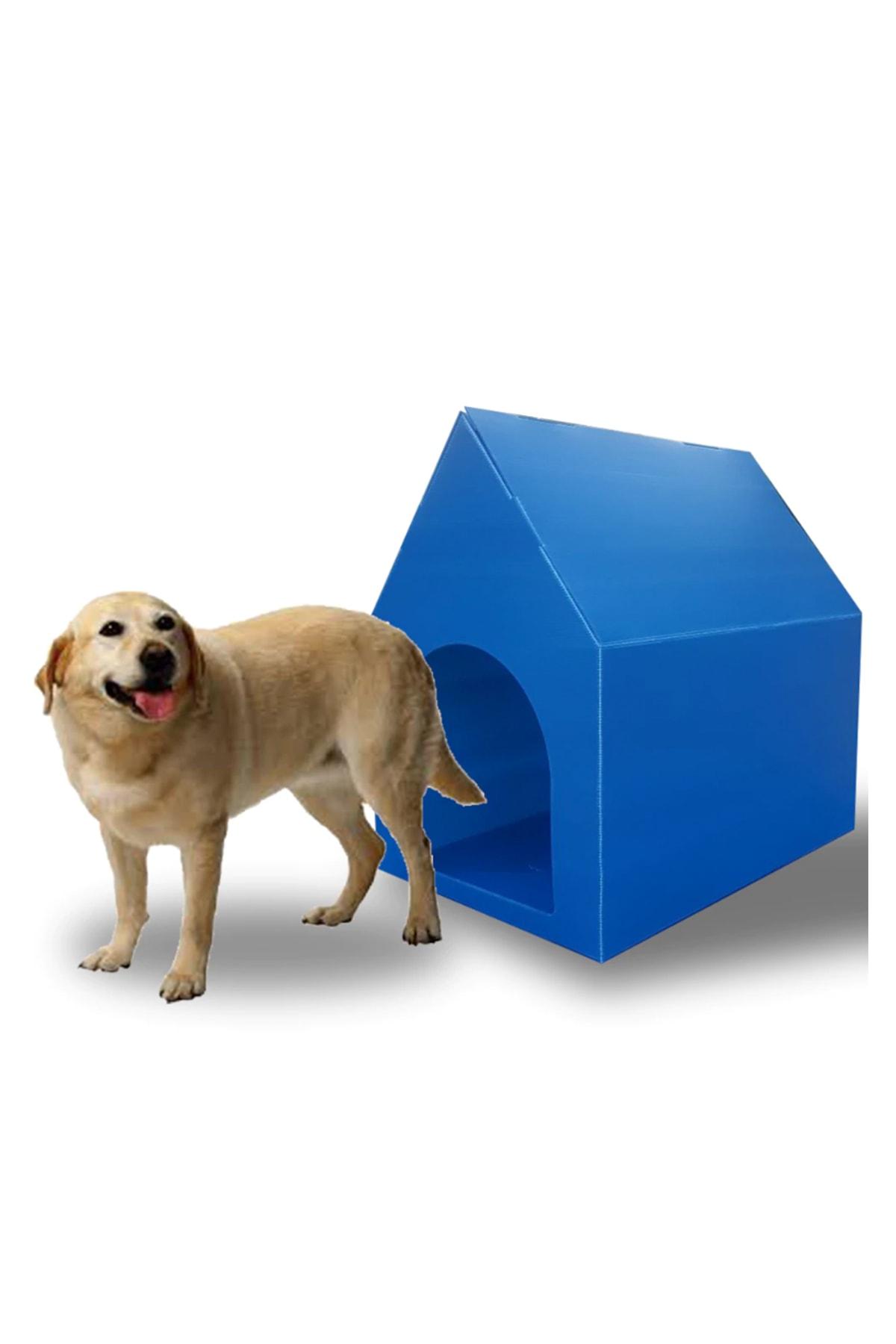 Weblonya Plastik Köpek Kulübesi Dış Mekan Köpek Yuvası 2117