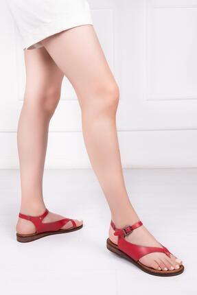 Deripabuc Hakiki Deri Kırmızı Kadın Deri Sandalet Dp-0081