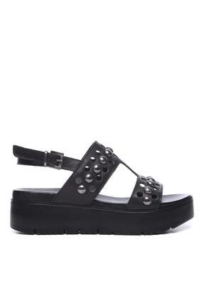 KEMAL TANCA Kadın Derı Sandalet Sandalet 169 52782 Bn Sndlt