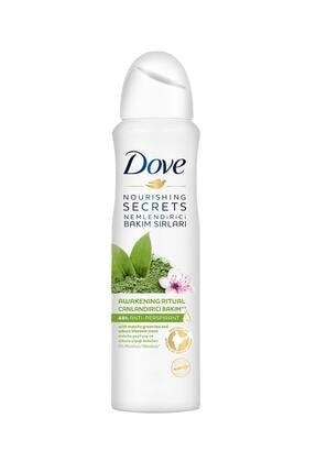 Dove Women Deo Matcha&Sakura Çiçeği