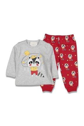 Dandini -(6-12-18 Ay) Tilkili Pijama Takım