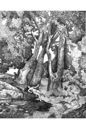 artoloji Su Çizgen-İsimsiz, kağıt üzerine mürekkepli kalem , 60x100(çerçeveli)