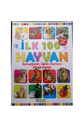 Anka Ilk 100 Hayvan Bebeğimin Zeka Kartları