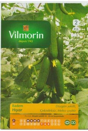 Vilmorin Hıyar Tohumu - Badem - Salatalık Tohumu