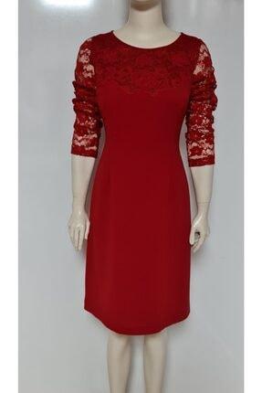 Perspective Kadın Kırmızı Fever Dantel Krep Elbise