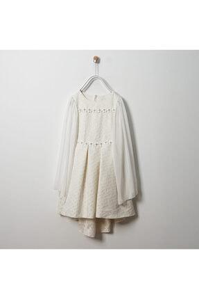 Panço Abiye Elbise 19126006100