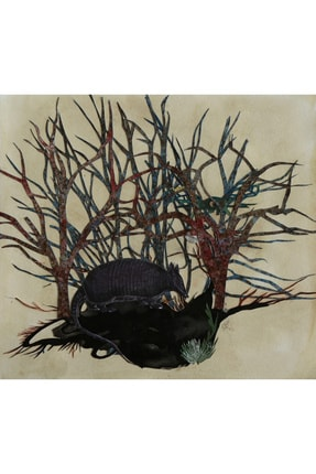 Ayşecan Kurtay Armadillo, 15x15, Press Tuval Üzerine Kağıt Oyma